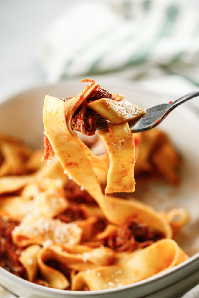 A forkful of Shredded Beef Ragu with Pappardelle.