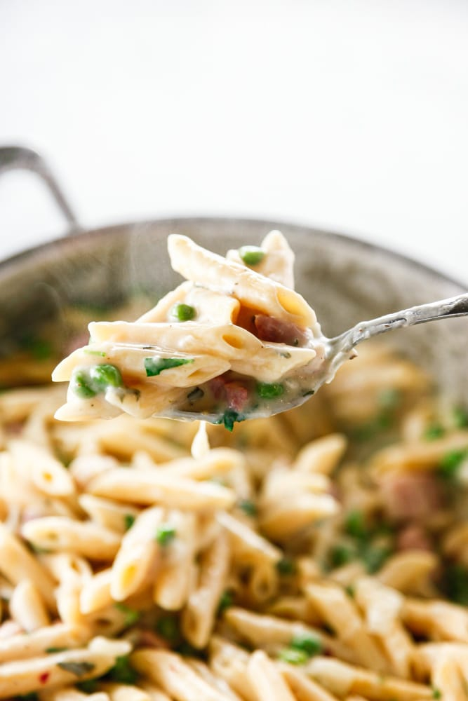 a spoonful of Ham and Peas Penne Pasta.