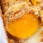 Pinterest image for butternut squash au gratin